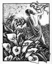 Persephone Brochure