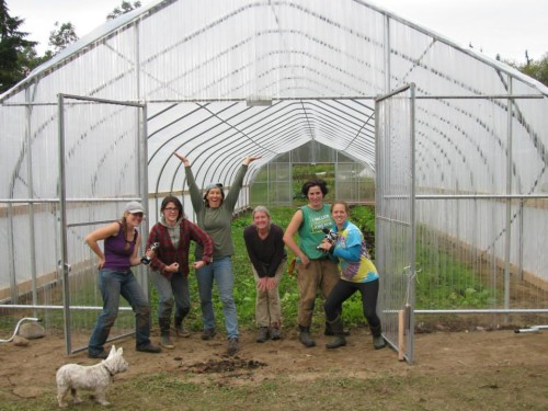 All female greenhouse builders
