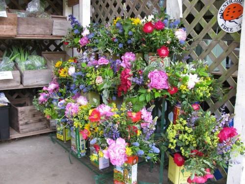 CSA flower bouquets