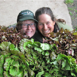 Huge lettuce heads and farmer and apprentice