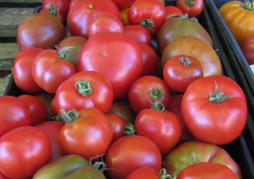 Persephone Farm Tomatoes