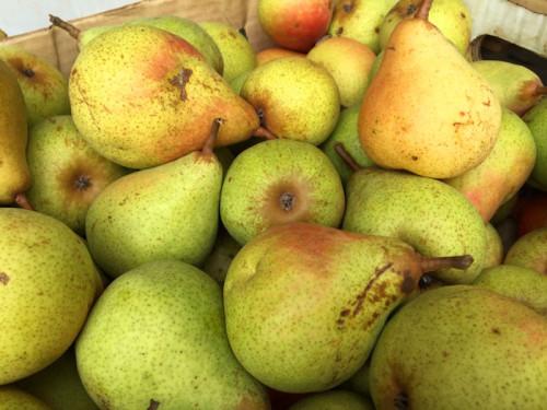 Persephone Farm Pears