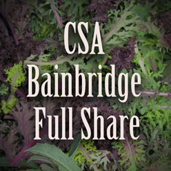 Bainbridge Island Full Share