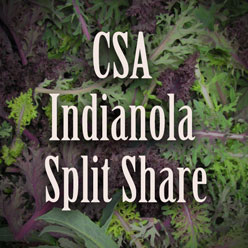 Indianola Split Share