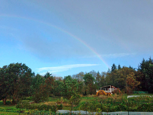 Rainbow over Persephone Farm